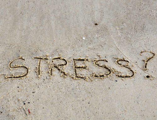 Zonder stress geen leven